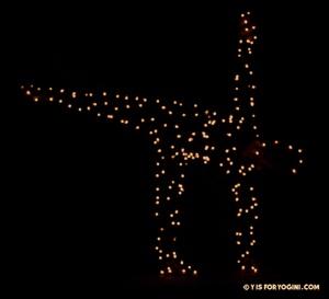 halfmoon-christmas-lights-yoga