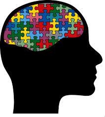 beginner brain