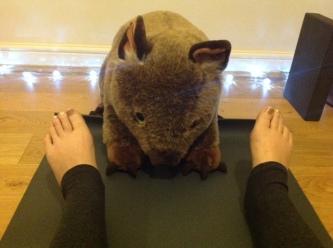 wombat yoga