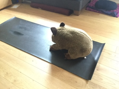 wombat helper.jpg