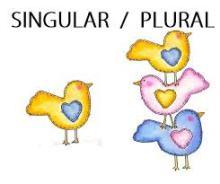 singular-plural