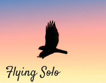 Flying-Solo.png